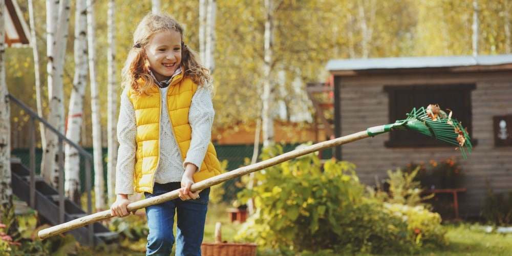 Yard Maintenance Checklist for Autumn Prep