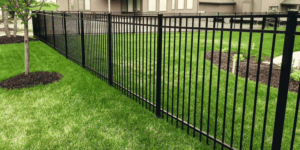 Ameristar fences are great for backyards, pools, and for keeping your dogs in the yard